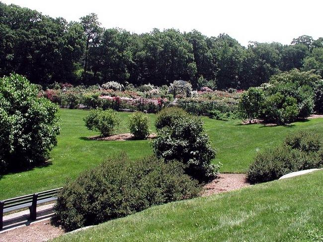 Ботанические сады Нью-Йорка