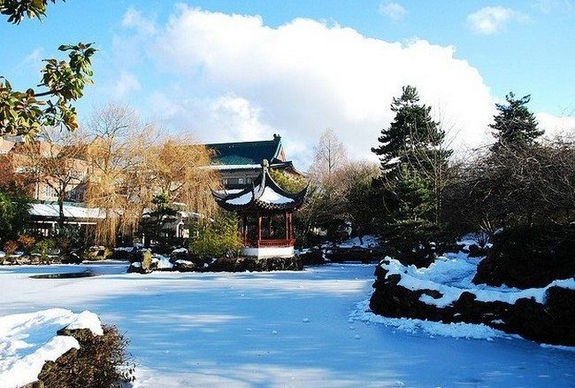 зимний Китайский сад Сунь Ятсена