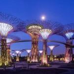 Сады у залива – фантастический уголок Сингапура