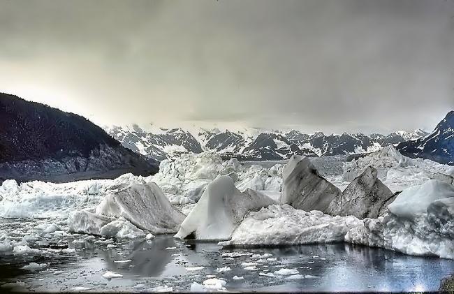 Ледник Колумбия