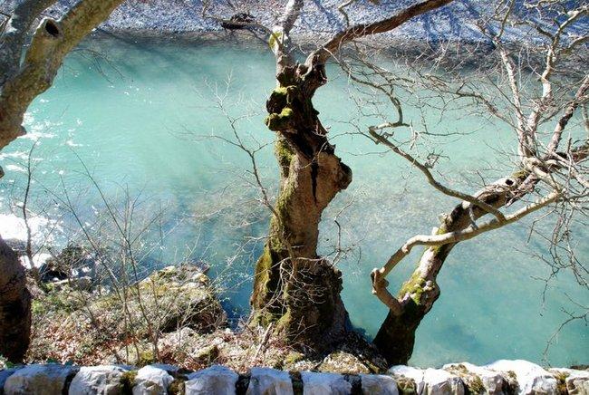 Национальные парки Греции. Викос-Аоос