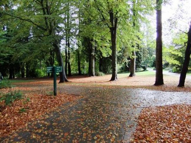 Стенли Парк