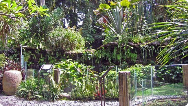 Парк рептилий на Бали