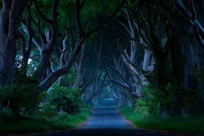 Мистическая Темная аллея в Ирландии