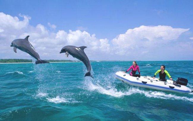 дельфины Национальные парки Багамских островов