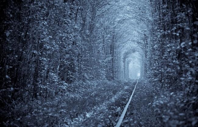 Романтический  «Тоннель любви»
