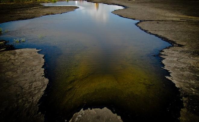 Асфальтовое озеро Пич-Лейк на острове Тринидад
