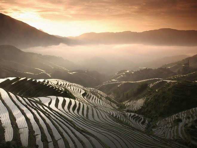 Удивительные рисовые террасы в Китае