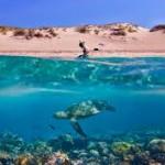 Тропические пляжи