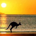 Чем опасна Австралия